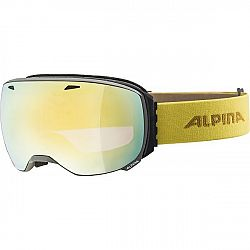 Alpina Sports BIG HORN HM čierna NS - Unisex lyžiarske okuliare
